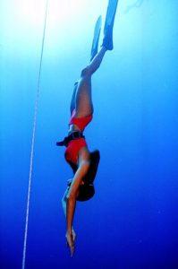 free diving santa barbara
