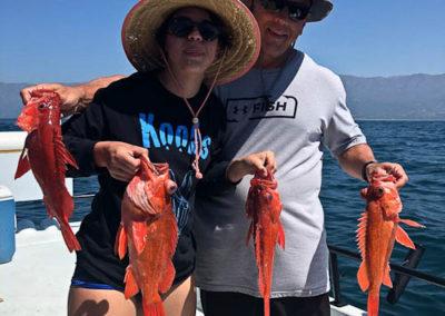 charter fishing trips santa barbara (32 of 58)